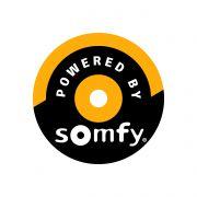 Buismotor Somfy LT 50 RH